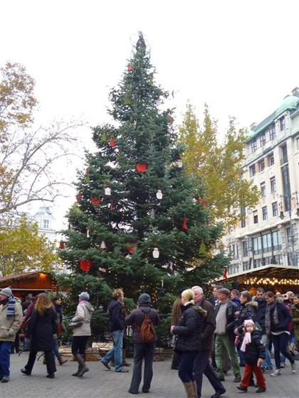 Belváros karácsonyfája
