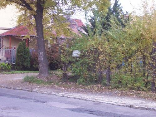 Kosd utca, Szántóföld utca sarok