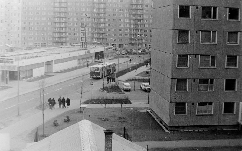 Újpalota, Zsókavár utca