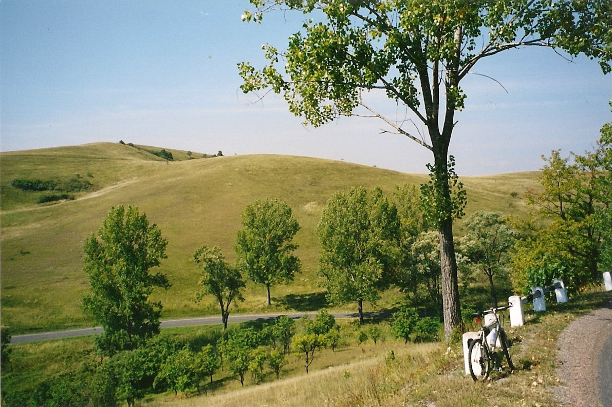 Cseres-völgy 2003