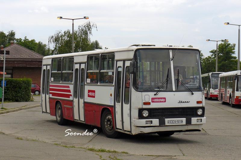 016 ccv519