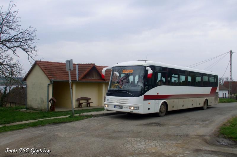36. kép