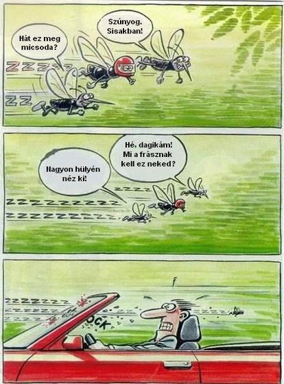 Blackhawk: szúnyog