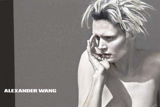 The Strange: alexander wang