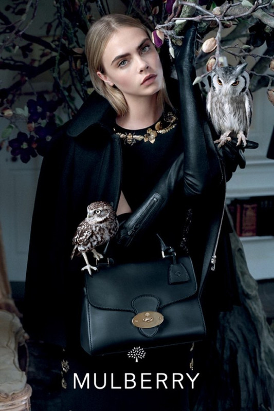 The Strange: mulberry-fall1