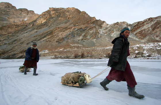 dalai lamer: acsedar01 114