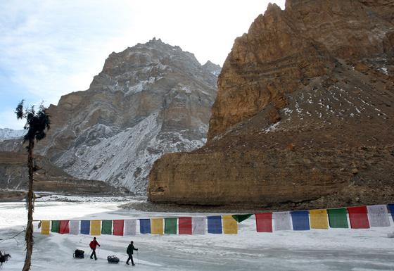 dalai lamer: saacsedar01 148