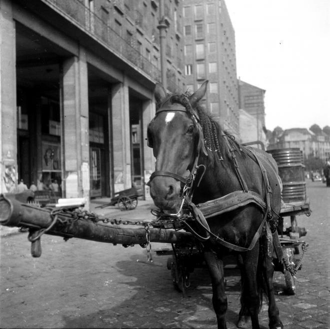 KarolyKorut-1955Korul-fortepan.hu-117336