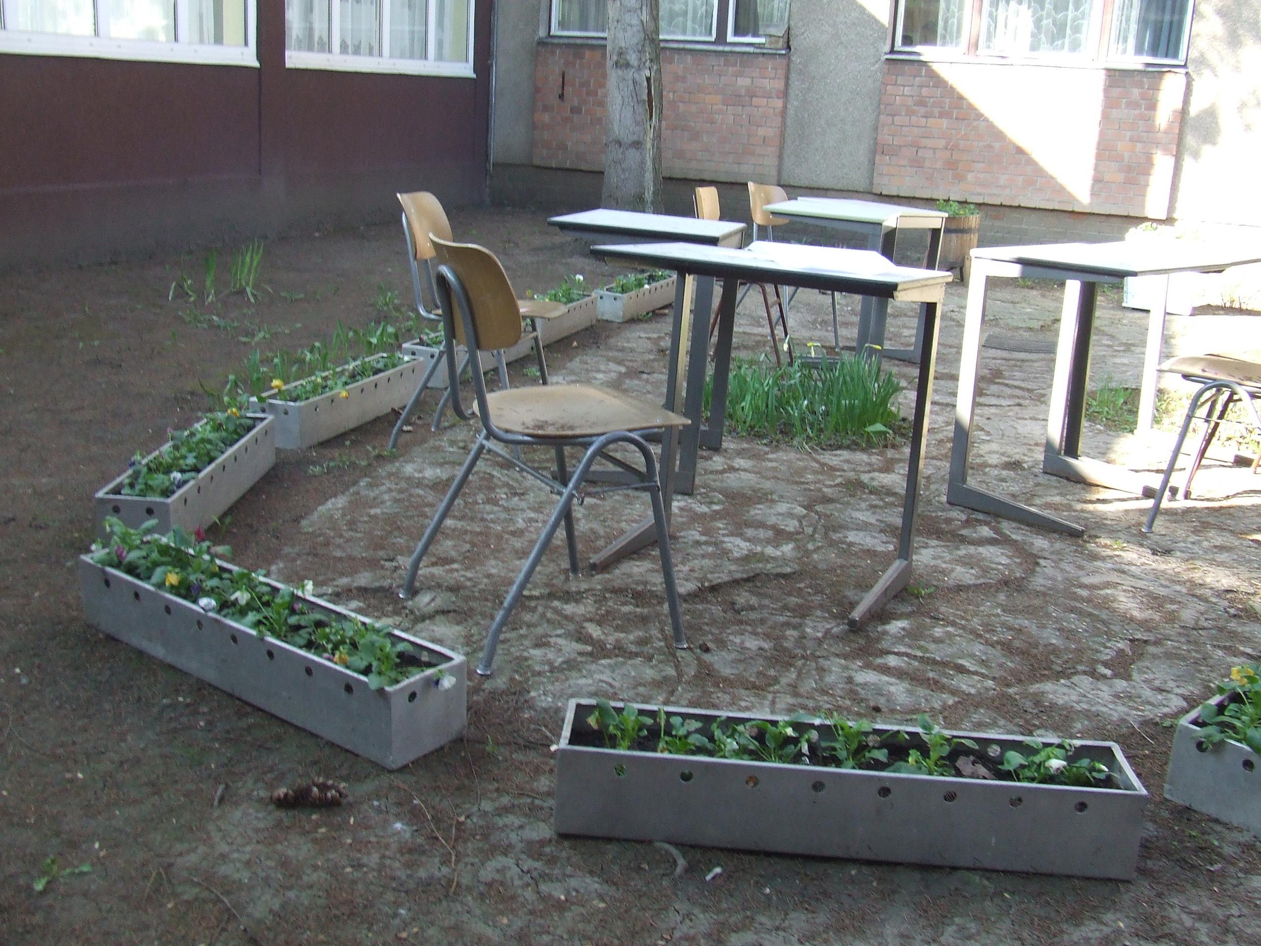 Selyemréti Iskola: DSCF6823 - indafoto.hu