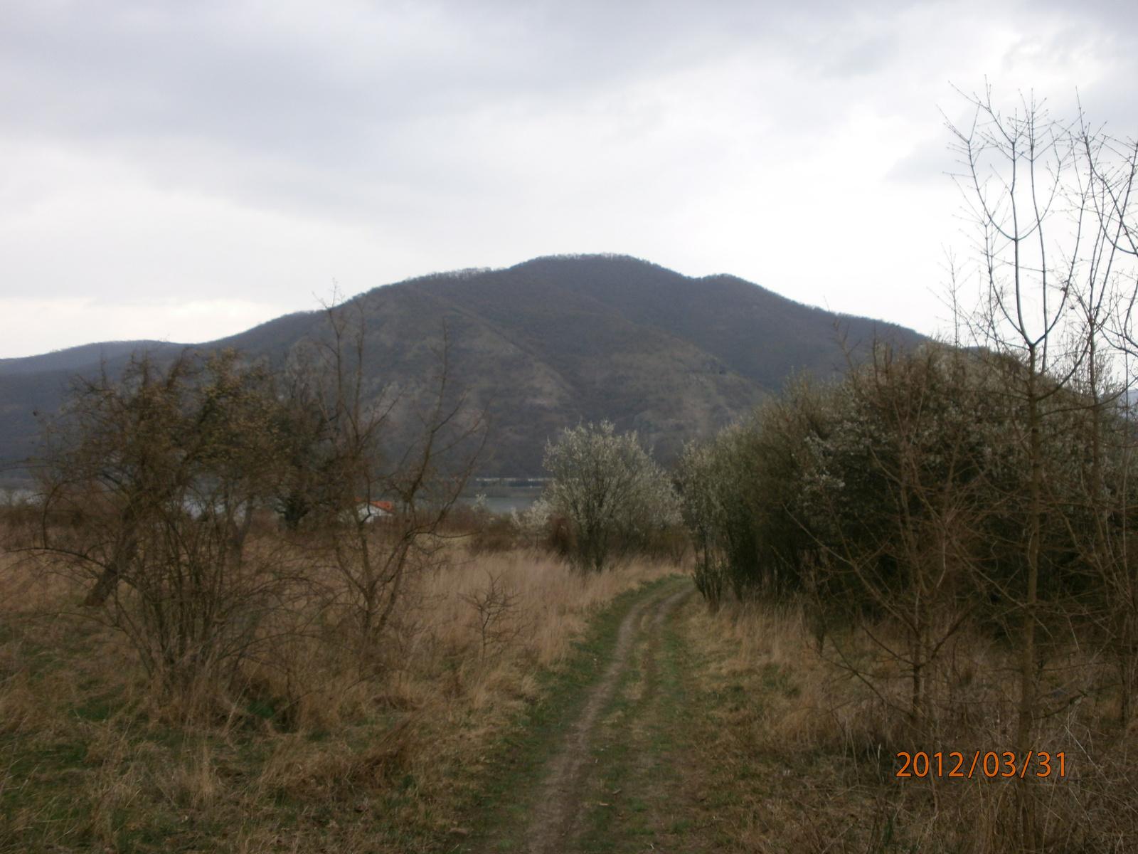 A Szent Mihály-hegy és a Hegyes-tető a Duna túloldalán, Dömös közelében. Fotó: Kőrössy Tamás