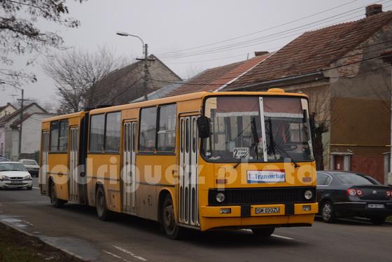 DSC 8364