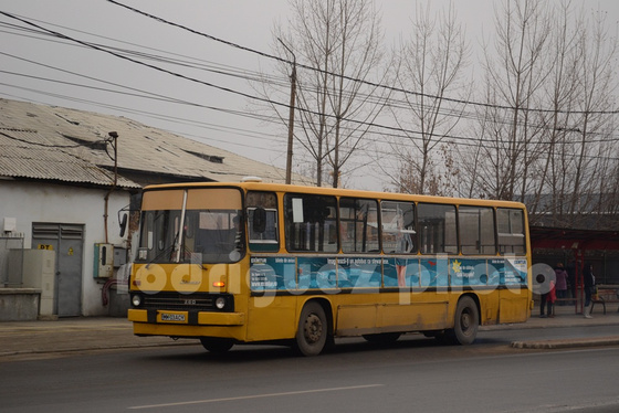 DSC 8380