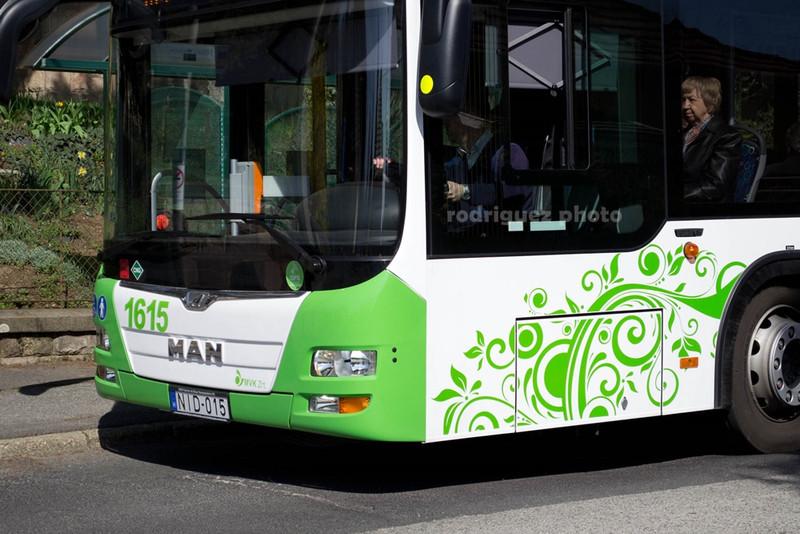 DSC 7033