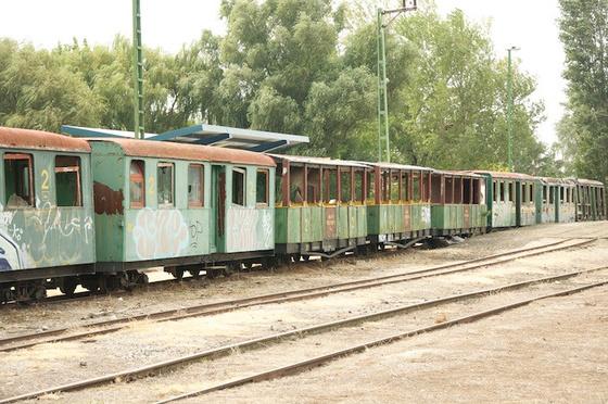 DSC1520