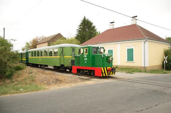 DSC1485