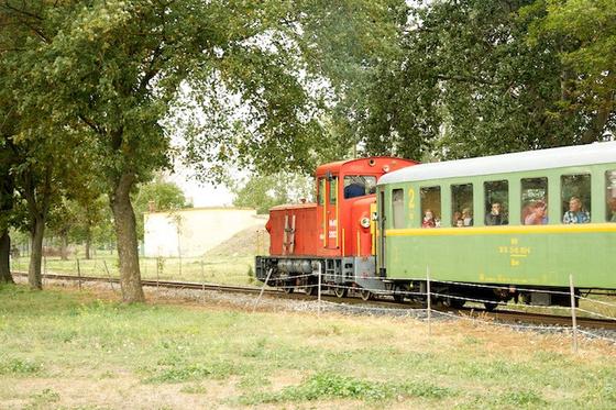 DSC1466