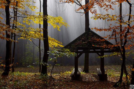 Tanyasi Tahó: esőbeálló Piszkés-tetőnél - indafoto.hu