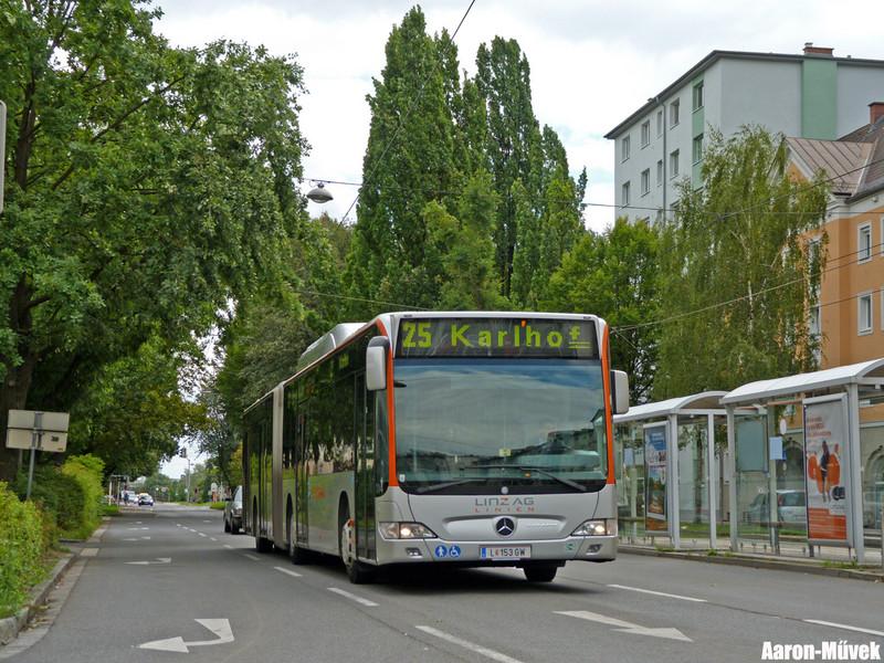 Dupla Linz (8)