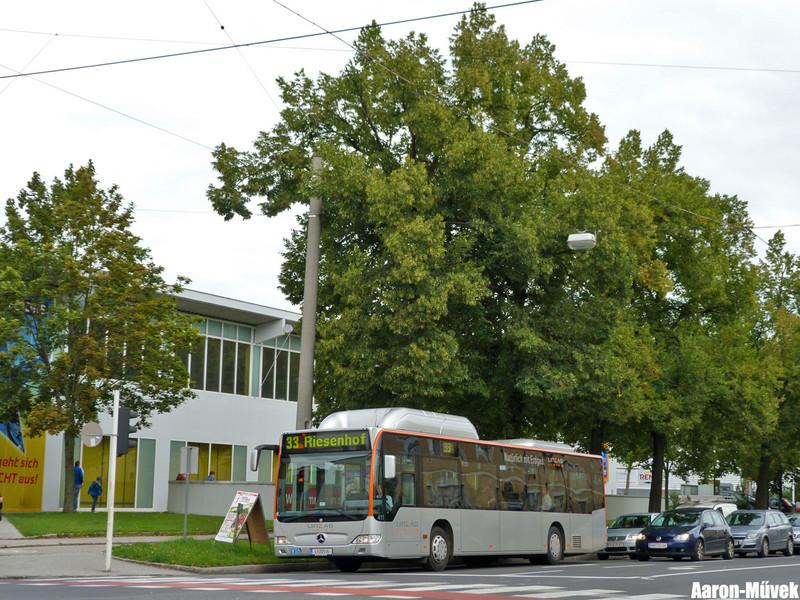 Dupla Linz (9)