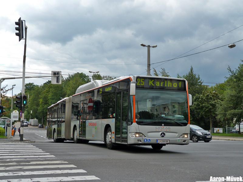 Dupla Linz (11)
