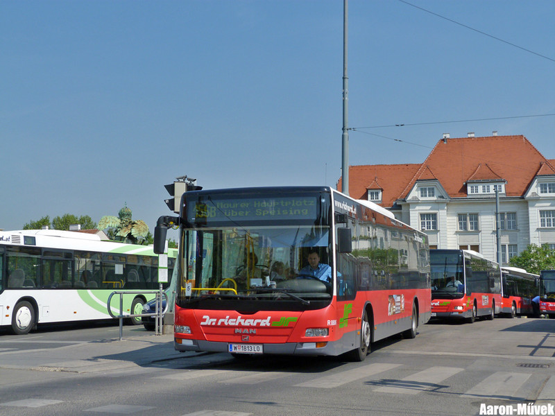 Bécsi Solaris Vadászat (2)