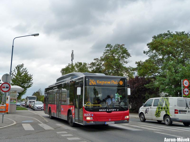 Bécs 2013 (30)
