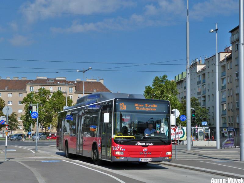 Bécs környéke III (10)