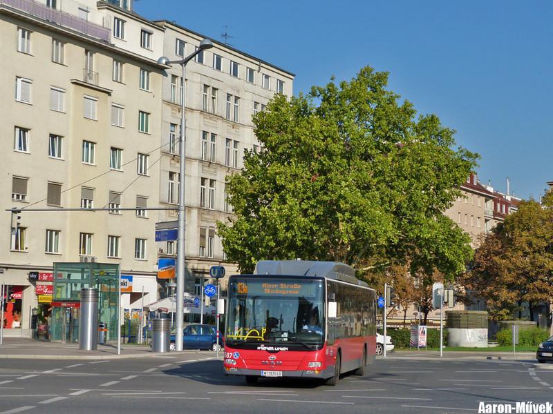 Tramwaytag 2013 (2)