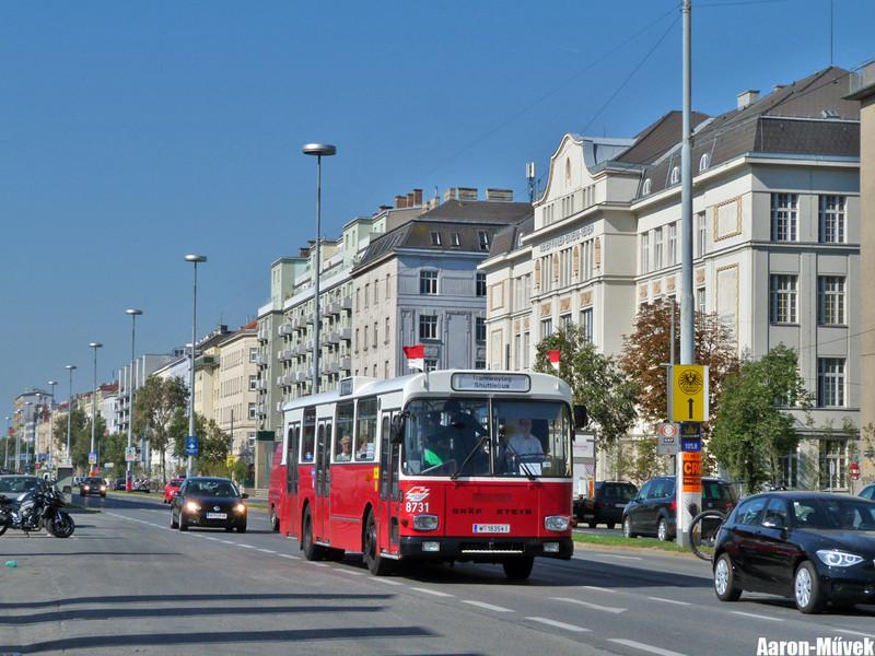 Tramwaytag 2013 (9)