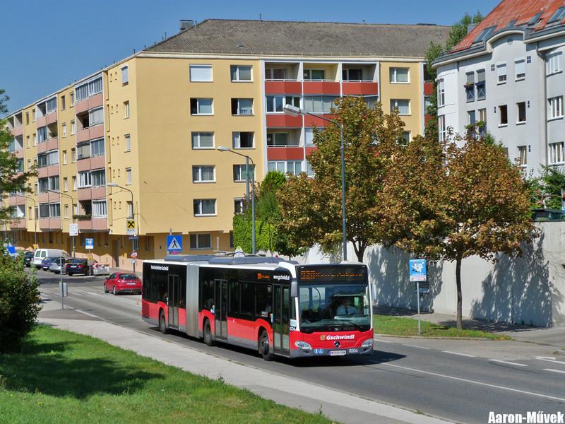 Tramwaytag 2013 (16)