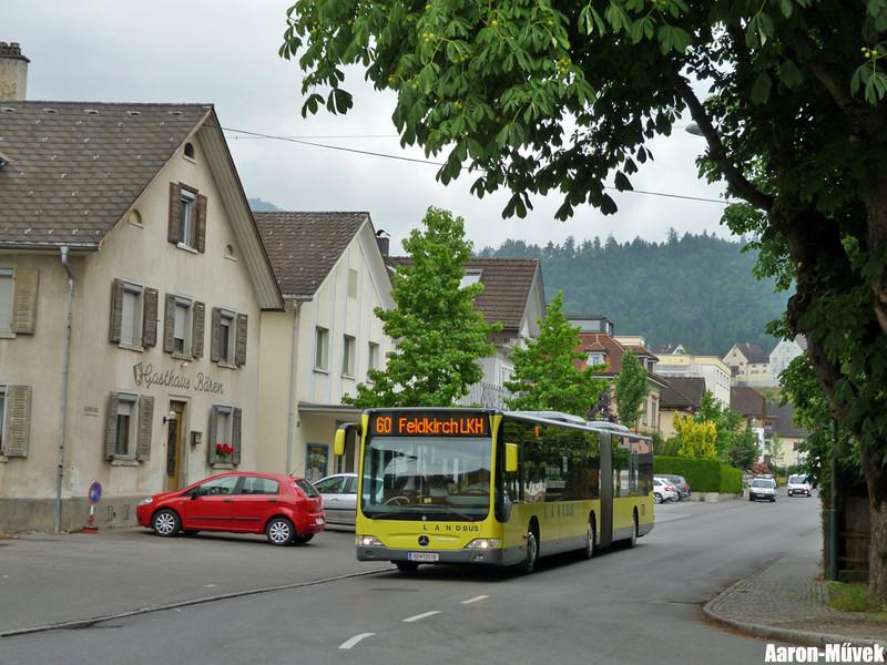 Vorarlberg (16)