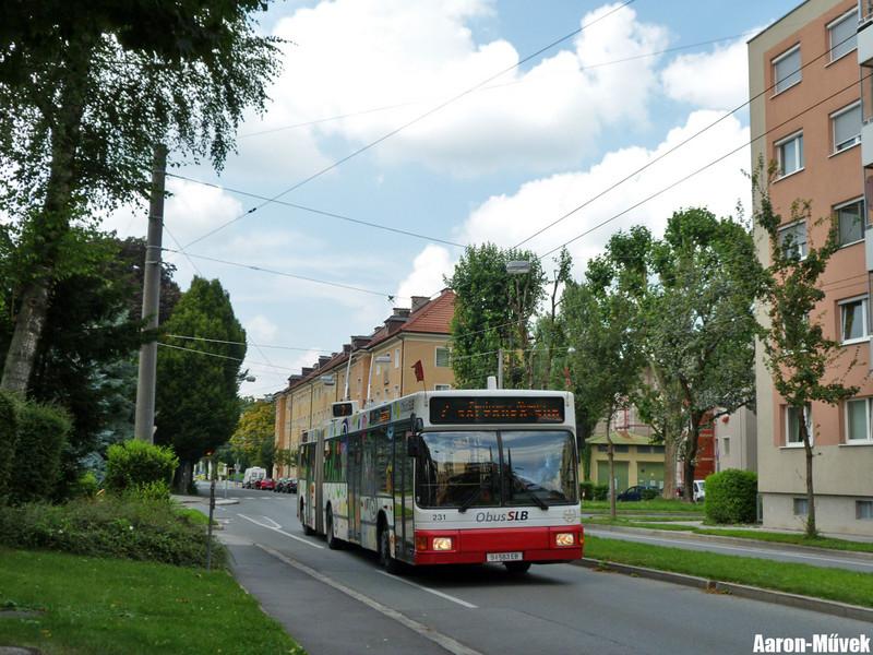 Salzburgi villámlátogatás (24)