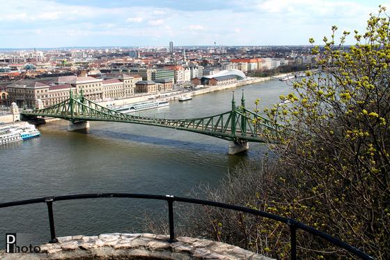DIphoto: Szabadság-híd