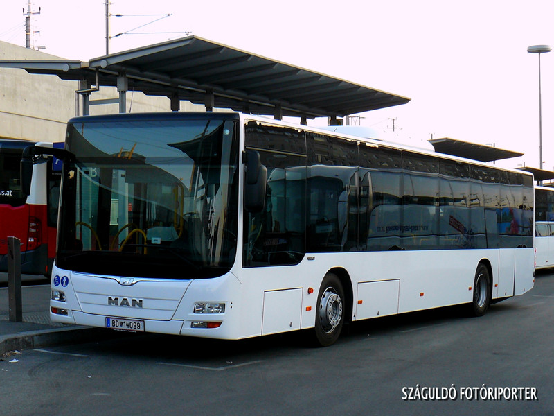 P1550052
