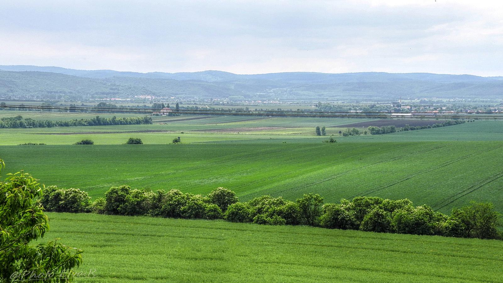 Tavasz Táj Sopron környéke