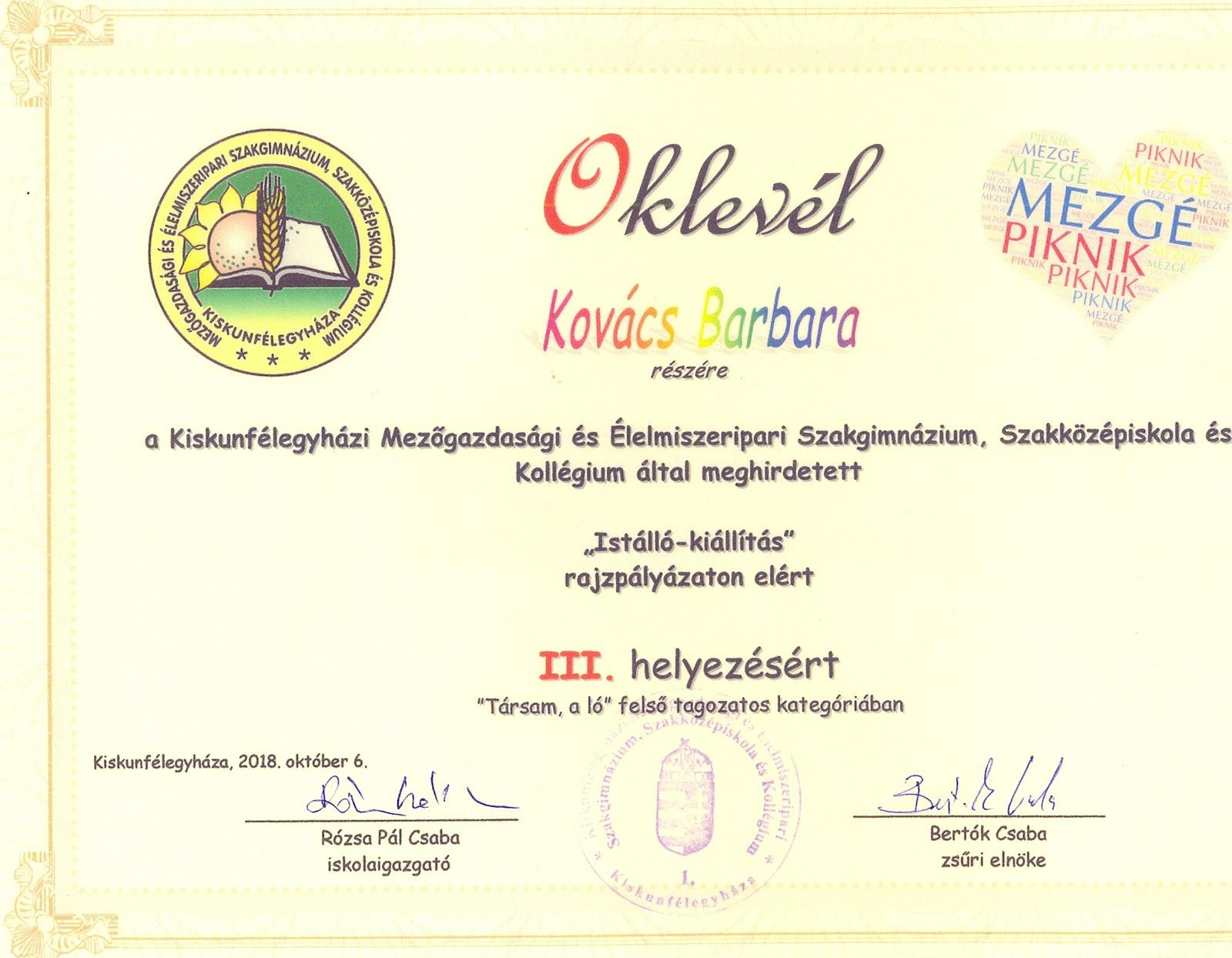 Kovács Barbara rajzpályázat0001