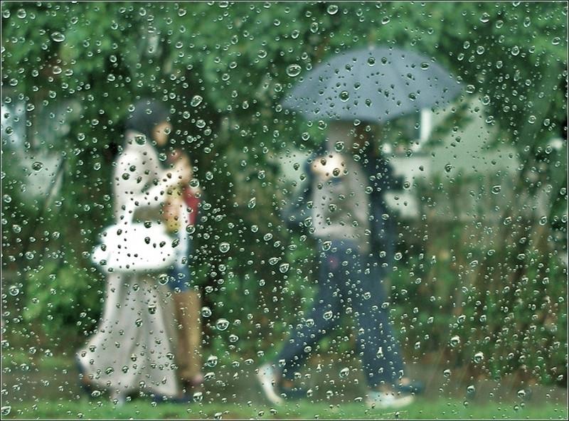 Képek az esőben