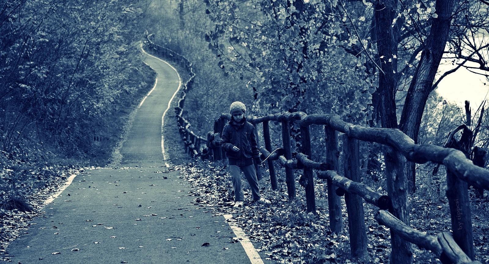 Dunaparti séta