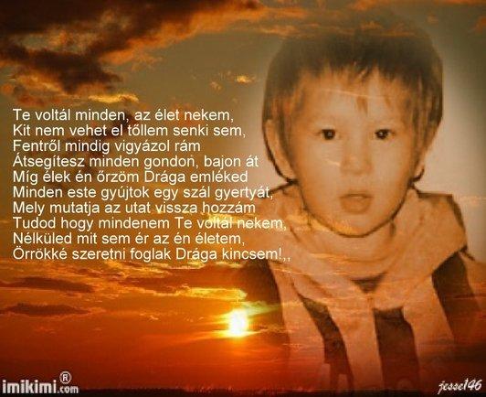 rozsa132: 01 - indafoto.hu