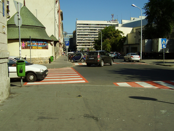 Zebra a falnak - fotó: Zoli
