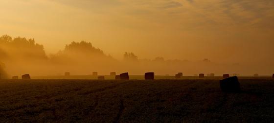 Kontiki: Reggeli köd