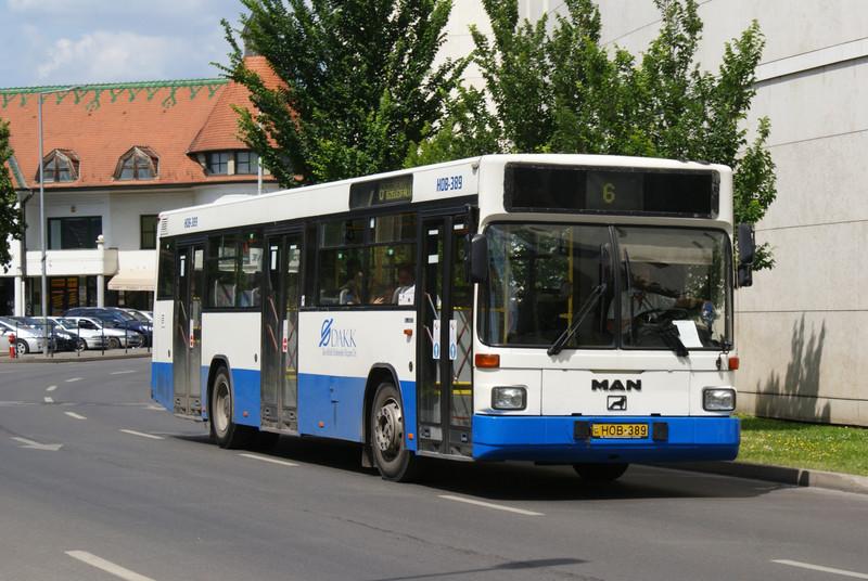 hob-389