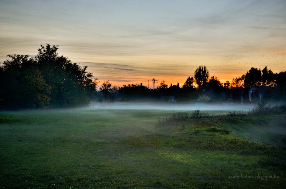 Ködbe burkolt táj