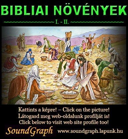 Biblia - L