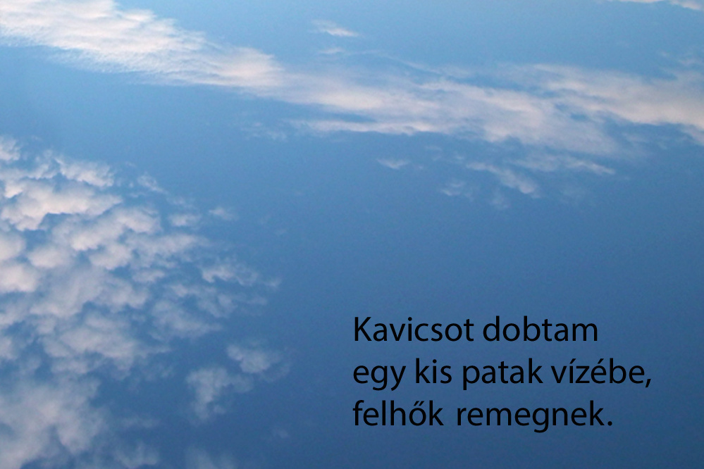haikuk 36