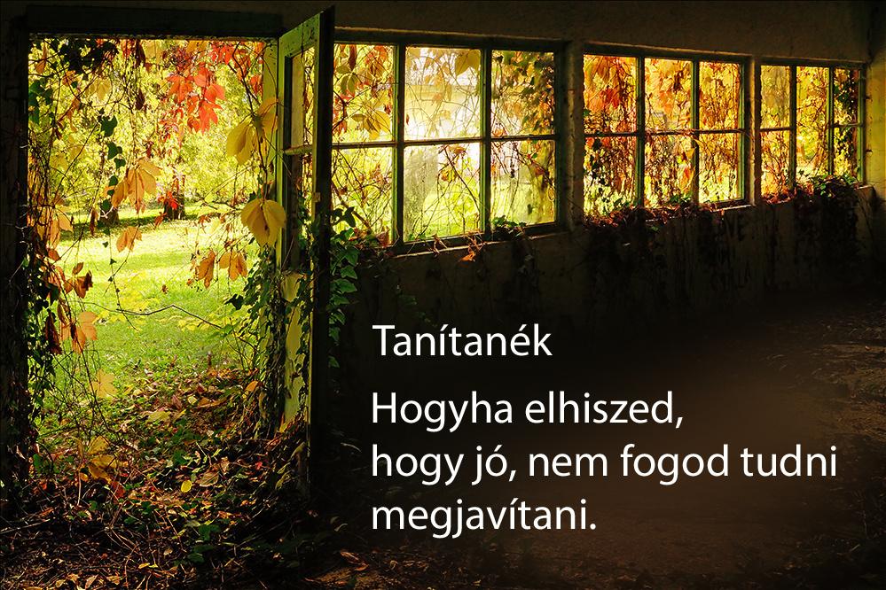 haikuk 79