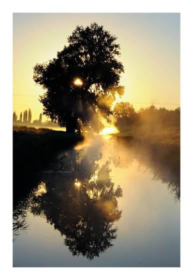 I\\/I4R[ł: Hajnal a berekben - indafoto.hu