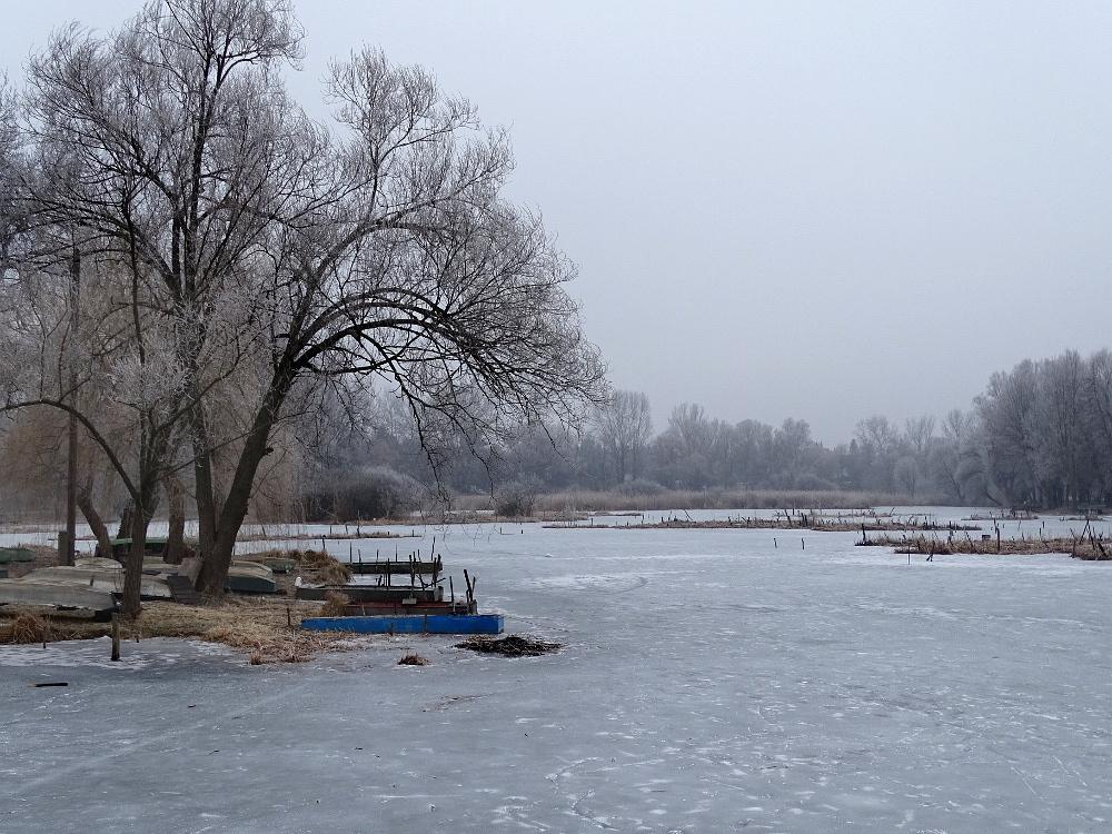 Veresegyház - tó 1