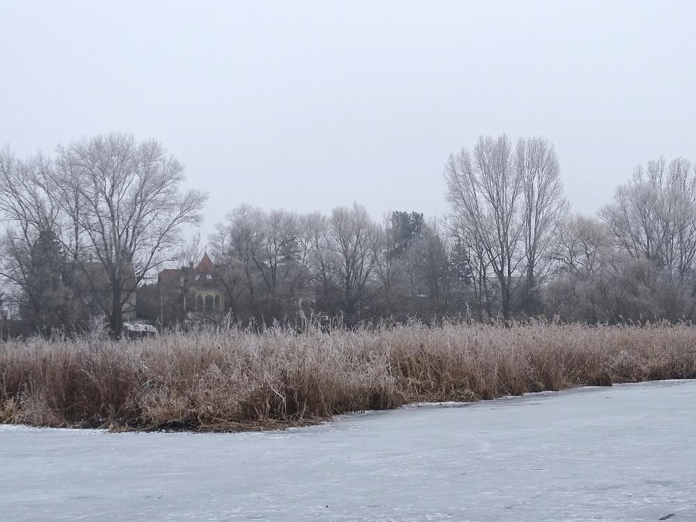 Veresegyház - tó 4