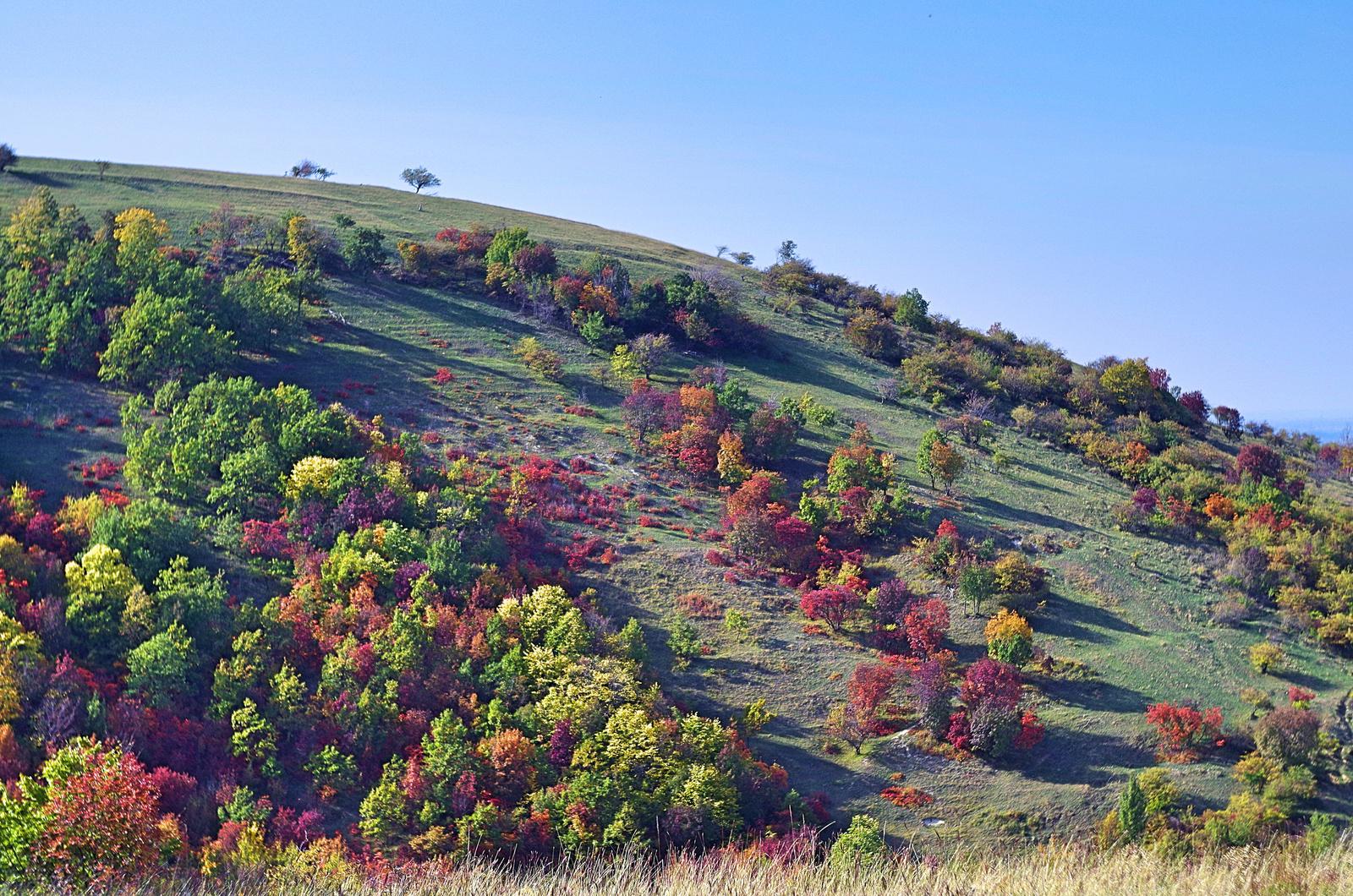 Érkezik az ősz